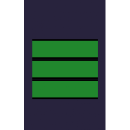 Hombreras Ejército del Aire Cabo Primero (Par)