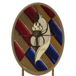 Distintivo del Curso Básico de Emergencias de la FAS