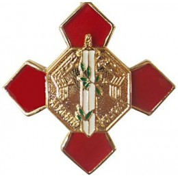 Pin Cruz Merito Policial Distintivo Rojo