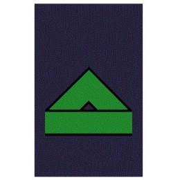 Manguitos Ejército del Aire Soldado Primera (Par)